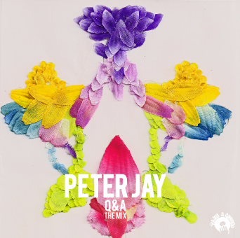 peter-jay-qa